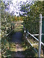 TM3374 : Footpath to Bridge Street, Huntingfield by Adrian Cable