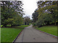 SD9304 : Alexandra Park, Oldham by David Dixon