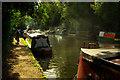 TQ0582 : Autumnal scene, Grand Union Canal : Week 42