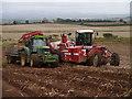NT7445 : Potato Harvesting Near Inkbottle Lodge : Week 42