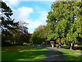 SY6890 : View north in the Borough Gardens, Dorchester by Brian Robert Marshall