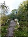 SJ4765 : The westernmost packhorse bridge at Hockenhull Platts by David Smith