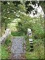 SJ4765 : The eastern packhorse bridge at Hockenhull Platts by David Smith