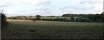 TQ3864 : Spring Park Panorama by David Anstiss