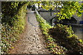 ST7564 : Canal towpath in Bath by Philip Halling