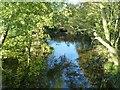 SK4134 : The River Derwent near Borrowash : Week 43