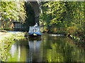 SJ9392 : Peak Forest Canal, Woodley by David Dixon