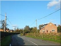 SJ5264 : Willington Lane by David Smith