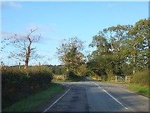 SJ5265 : Wood Lane crossing Willington Lane by David Smith