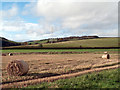 NT4954 : Fields on south-west side of A68 by Trevor Littlewood