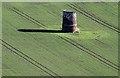 NT5684 : Heugh Doocot, North Berwick : Week 43