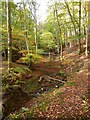 NY9460 : Stream bed in Letah Wood by Oliver Dixon
