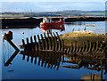 NS4473 : Wrecks Bowling Harbour : Week 43