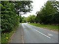 SJ7049 : Wrinehill Road, Wynbunbury by Alexander P Kapp