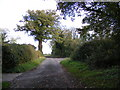 TM4379 : Road to the A145 London Road & entrance to Church Farm Bungalow by Adrian Cable