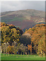 SD6490 : Sedbergh Golf Course, Abbot Holme : Week 44