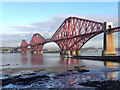 NT1378 : The Forth Bridge : Week 43