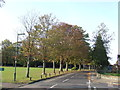 TQ3558 : Leas Road, Warlingham by Malc McDonald