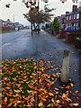 SE4104 : Nanny Marr Road Darfield by Steve  Fareham