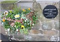 SE3516 : Priory Square plaque by Pauline Eccles