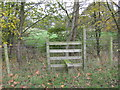 SJ6264 : Stile into Woodland at Fennywood Farm by Dr Duncan Pepper