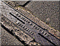 C8532 : Moore's drain cover, Coleraine by Albert Bridge