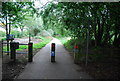 TG2209 : National Cycle Route 1 out of Norwich by N Chadwick