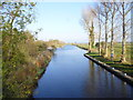 TL5165 : The River Cam from Waterbeach Sluice by Finlay Cox