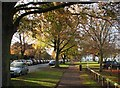 TL4657 : November afternoon in Davy Road by John Sutton