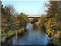 SJ9395 : River Tame by David Dixon