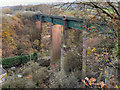 SJ9993 : Etherow Viaduct, Broadbottom by David Dixon