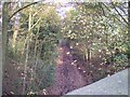 SD5910 : Trackbed of Whelley Loop line from Arley Lane bridge by Raymond Knapman