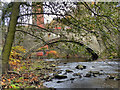 SJ9993 : River Etherow, Broadbottom Bridge. by David Dixon