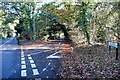 SU9386 : Boveney Wood Lane by Graham Horn