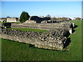 TQ4778 : The chapter house at Lesnes Abbey by Ian Yarham