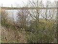 TL0042 : Stewartby Lake by M J Richardson