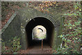 SK5962 : Tunnels or bridges by Richard Croft