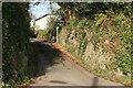 SX1254 : Narrow Road through the rock by roger geach