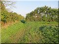 TL2676 : Path past Kings Ripton by Hugh Venables
