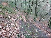 SE0024 : Hebden Royd Footpaths 89 and 90 in Paper Mill Wood by Humphrey Bolton