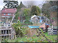 SP1580 : Allotments by Graham Butcher