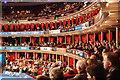 TQ2679 : Royal Albert Hall : Week 49