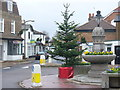 TQ1667 : Thames Ditton Christmas Tree by Colin Smith