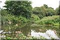 TQ6147 : Bend, River Medway by N Chadwick