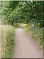 SK6476 : Clumber cycle route by Richard Croft