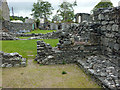 SN7465 : The Chapter House - Strata Florida Abbey by Phil Champion