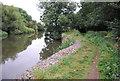 TQ6647 : River defences (Gabion boxes) by N Chadwick
