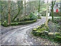 SE0023 : Paper Mill Bridge, Cragg Vale by Humphrey Bolton