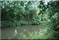 TQ6748 : River Medway by N Chadwick