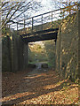 SS8583 : National Cycle Route 4 passing beneath railway bridge, Cefn Cribwr by eswales